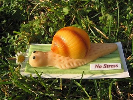 Slow-flow-snegl